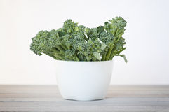 Broccoli bowl Royalty Free Stock Photo
