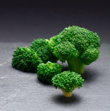 Broccoli. Brassica oleracea Stock Photography