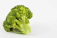 Broccoli Brassica oleracea Royalty Free Stock Photography