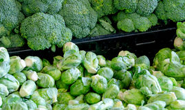 Broccoli and brussel sprouts Royalty Free Stock Images