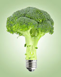Broccoli with bulb screw Stock Photography