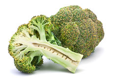 Broccoli cabbage Stock Photography