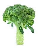 Broccoli Cabbage Stock Photos