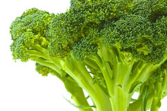 Broccoli cabbage. On white background Stock Image