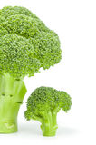 Broccoli cabbage on a white background. Clipping path. Fresh head of broccoli isolated on a white background cutout Stock Image