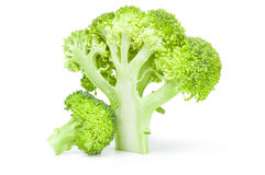 Broccoli cabbage on a white background. Clipping path. Fresh raw broccoli isolated on a white background cutout Royalty Free Stock Photo