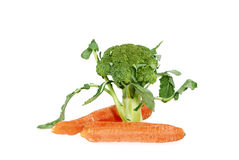 Broccoli and Carrot Royalty Free Stock Photo