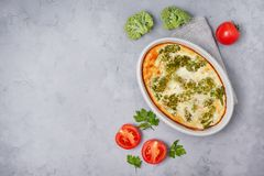 Broccoli casserole Royalty Free Stock Photo