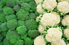 Broccoli and cauliflower on market. Broccoli and cauliflower on village market close up Stock Photos