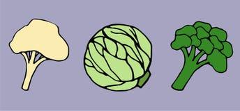 Broccoli, cavolfiore e cavolo su un fondo porpora illustrazione di stock