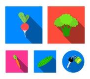 Broccoli cavolo, ravanello, cetriolo verde, carote con le cime Le verdure hanno messo le icone della raccolta nel simbolo piano d illustrazione vettoriale