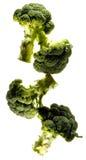 Broccoli che compongono Fotografie Stock