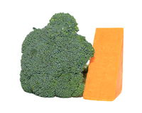 Broccoli and cheese. Broccoli and cheddar cheese on white background Stock Photos