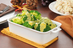 Broccoli with cheese sauce Royalty Free Stock Photo