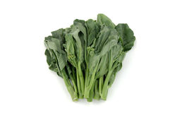 Broccoli chinois Image libre de droits