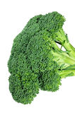 Broccoli  (with clipping path) Royalty Free Stock Photography