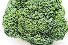 Broccoli close up. A piece of broccoli close up showing the individual florets royalty free stock photos