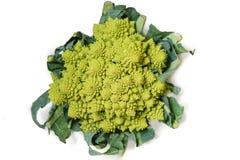 Broccoli. Close up of some fresh broccoli still life stock photo