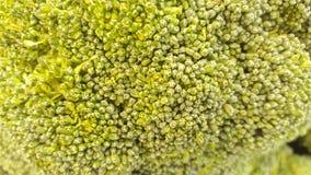 Broccoli. A closeup image of the surface of broccoli, a garden vegetable Stock Photo