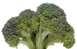 Broccoli closeup looking like a tree Stock Images