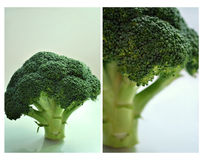 Broccoli. Collage; little tree; focus of food Stock Photo