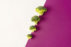 Broccoli on colored violet white background. Diagonal. Seasonal vegetables in modern style design pattern. Broccoli on colored violet white background. Diagonal Stock Image