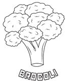 Broccoli coloring page Stock Photography