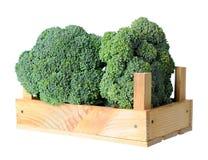 Broccoli in crate Stock Photo
