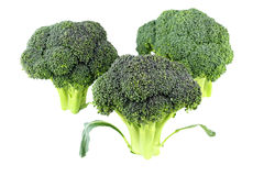 Broccoli Crowns. Three raw green flowering stalks of this vegetable stand upright isolated on white Royalty Free Stock Photo