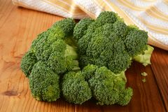 Broccoli crowns Stock Image