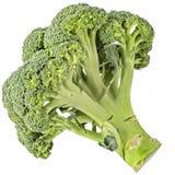 Broccoli cru d'isolement sur le blanc Photographie stock libre de droits