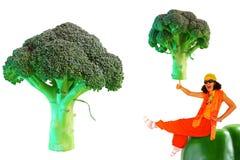 Broccoli crudi Fotografie Stock