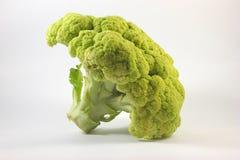 Broccoli crudi Fotografia Stock Libera da Diritti