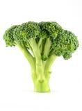 Broccoli crudi freschi Fotografia Stock