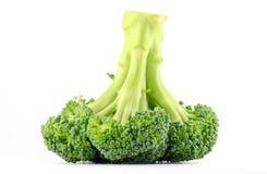 Broccoli crudi freschi Fotografie Stock