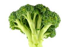 Broccoli crudi freschi Fotografie Stock Libere da Diritti