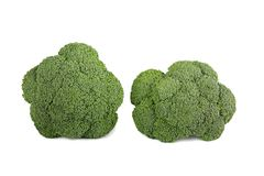 Broccoli crudi isolati su fondo bianco Fotografie Stock Libere da Diritti
