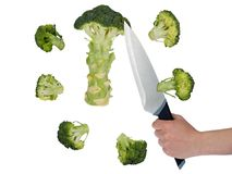 Broccoli cut into pieces with a knife Stock Image