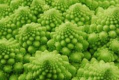 Broccoli de Romanesco Image stock