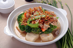 Broccoli de tofu Images libres de droits