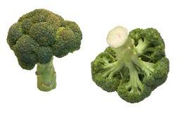 Broccoli deux d'isolement sur le blanc Photographie stock