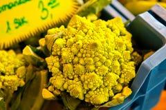 Broccoli di Romanesco Immagine Stock Libera da Diritti