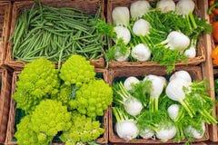 Broccoli di romanesco e del finocchio Fotografie Stock
