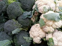 Broccoli di verdure Immagine Stock Libera da Diritti