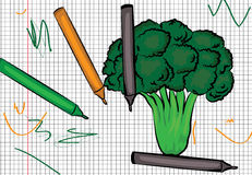 Broccoli drawn on paper illustration Royalty Free Stock Photo