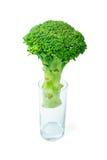 Broccoli in een glas dat op wit wordt geïsoleerdg Stock Foto's