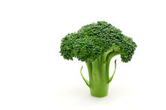 Broccoli floret Royalty Free Stock Image