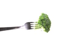 Broccoli floret on a fork. Royalty Free Stock Images