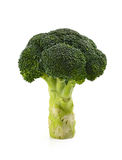 Broccoli floret Royalty Free Stock Photo