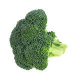 Broccoli Floret On White Background Stock Photography